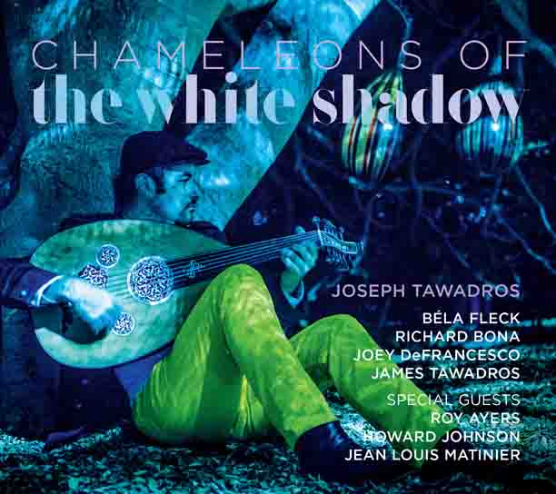 Chameleons of the White Shadow