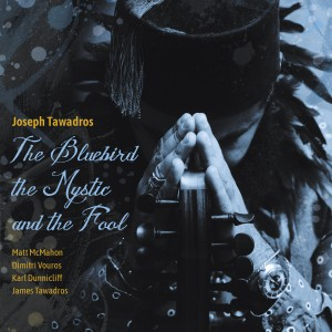 Bluebird the Mystic and the Fool front cover 1MB